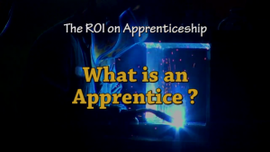 what is apprenticeship